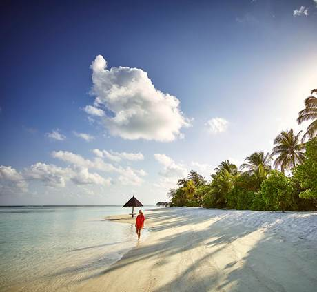Flash sale Malediven - LUX* South Ari Atoll (11 dagen / 8 nachten)