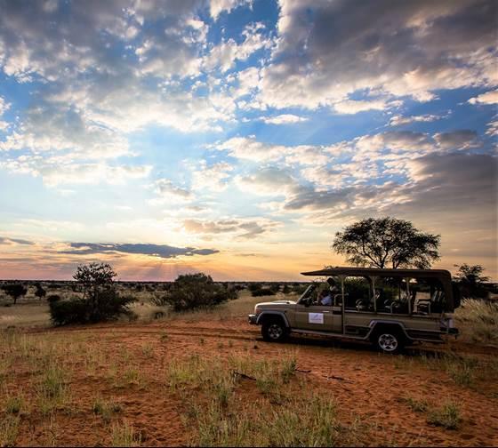 Kalahari rit bij zonsondergang