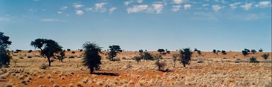 Windhoek – Kalahari