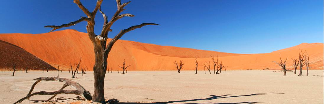 Kalahari - Namib Naukluft