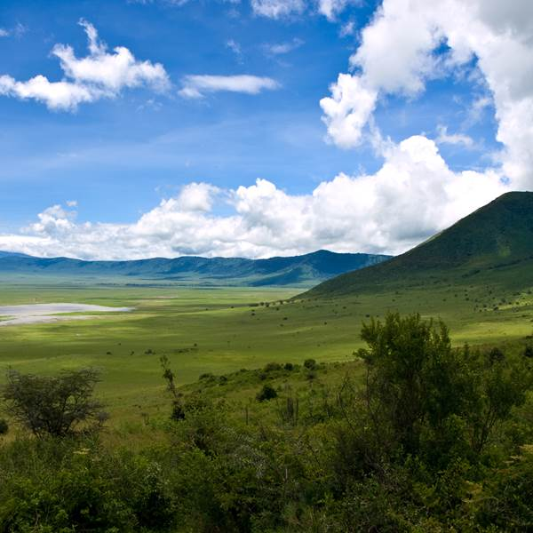 Ngorongoro Krater & Serengeti Nationaal Park