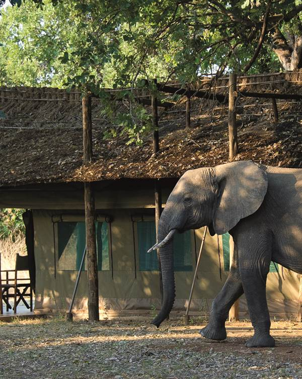 Lusaka – South Luangwa Nationaal Park