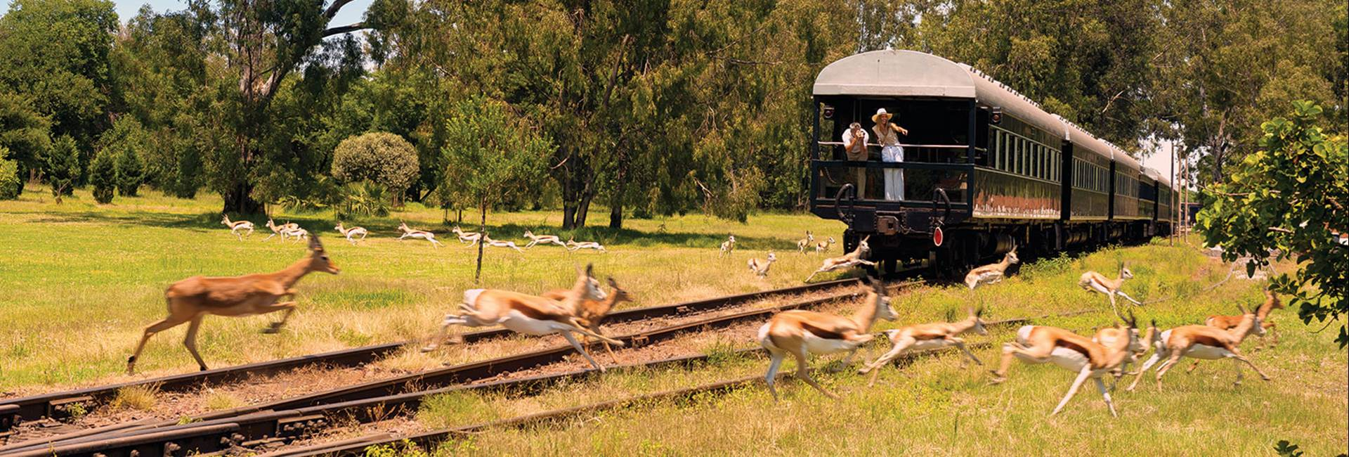 Shongololo Express - The Good Hope/Golf Tour