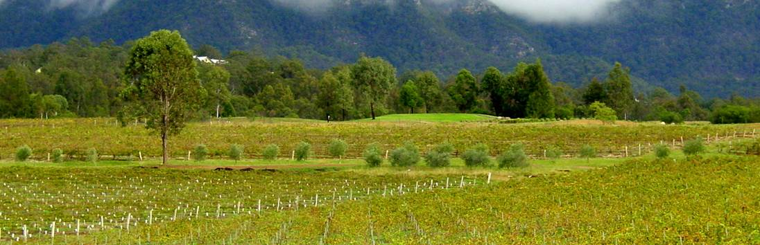 Blue Mountains - Hunter Valley