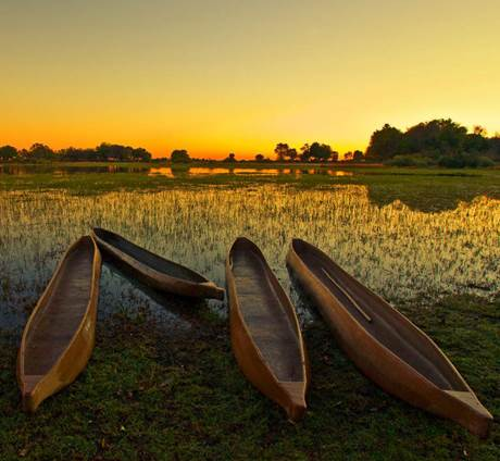 Okavango & Chobe Trail - Zuid Lodges (2019)